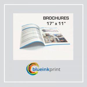 """Brochure 17"""" x 11"""""""